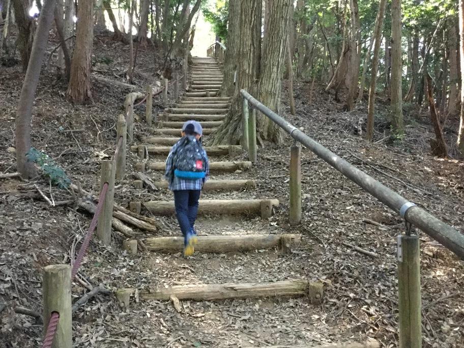 長い階段を上ってます