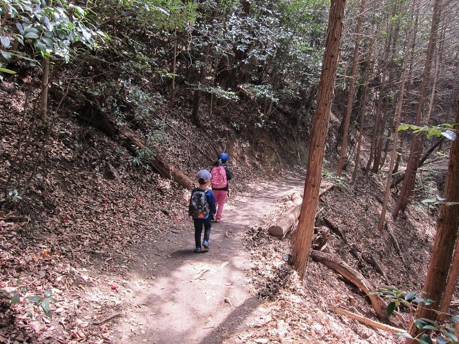 猿投山の登山道