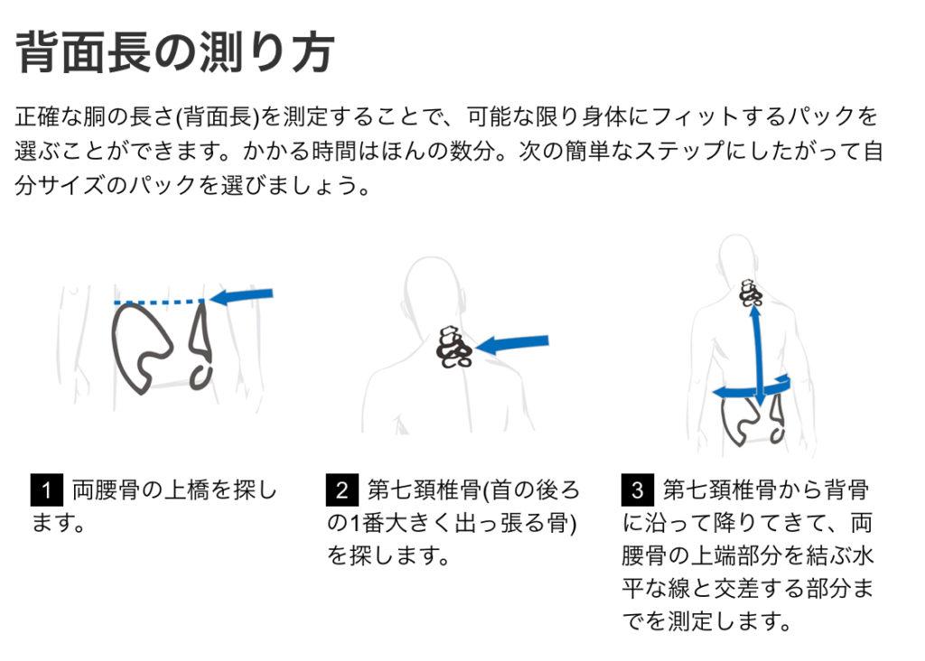 背面長の測り方